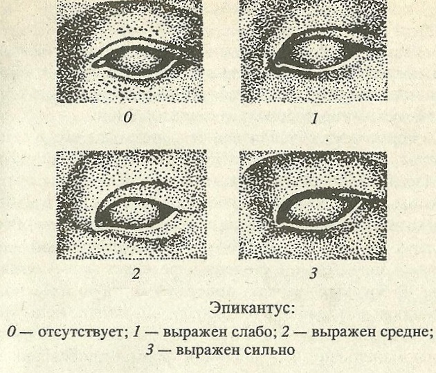 http://lubovbezusl.ucoz.ru/_pu/16/33116200.jpg