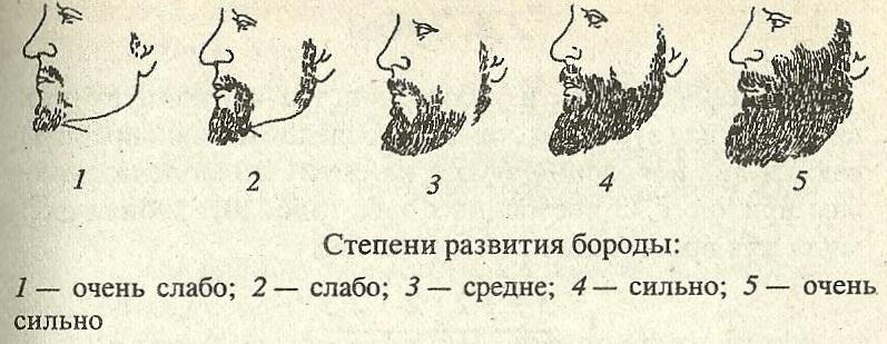 рост бороды у разных народов